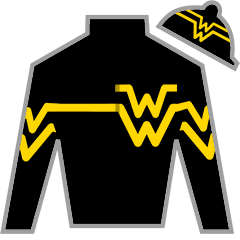 Bound For Nowhere Silks