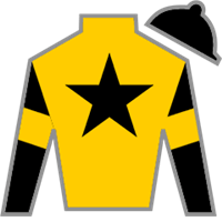 Chestertown Silks