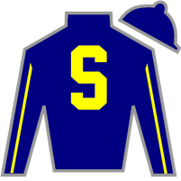 Crafty Conquest Silks