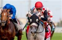 World Approval_Woodbine Mile 2017_615x400