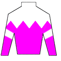 Best Warrior Silks