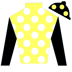 In Her Time Silks