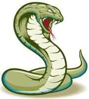 Conquest Cobra Silks