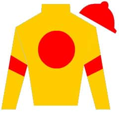 Point in Time Silks