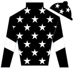 Another Journey Silks
