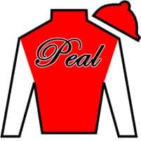 Larry Peal Silks