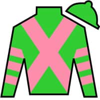 The Good Witch Silks