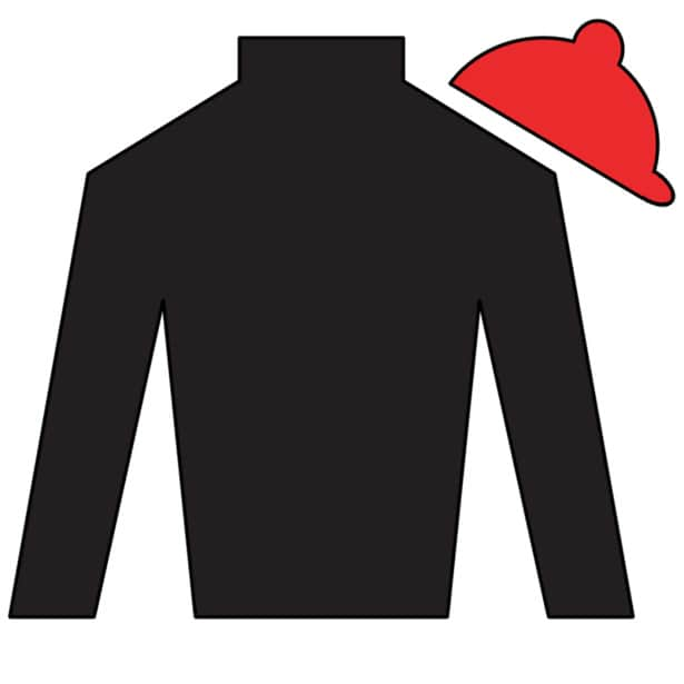Point of Entry Silks