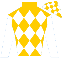 Smooth Operator Silks