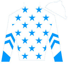 Fly Bye Wildcat Silks
