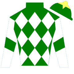 Rosie's Lady Silks