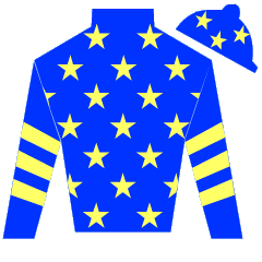 Miracle Of Medinah Silks