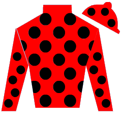 Dutch S Silks