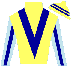 Satirical Boy Silks