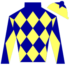 Red Somerset Silks
