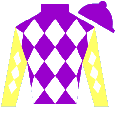 Dubai Iconic  Silks