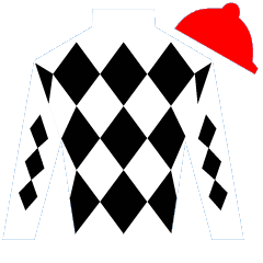 Ghost of a Chance Silks