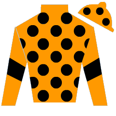 Miss Starlight Silks