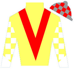 Splendid Victory Silks