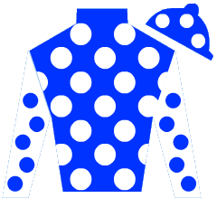 Dreese Silks