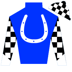 Salon Soldier Silks