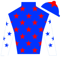 Anya's Angel Silks