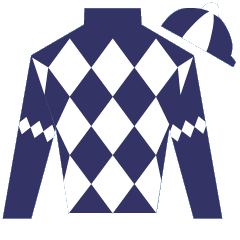 Sheldon Nitenson Silks