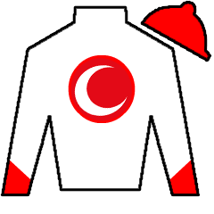 Big Macher Silks