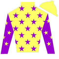 Bold Affair Silks