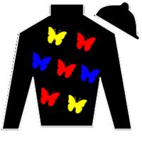 Joy To The King Silks