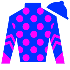 Crook's Bodgit Silks