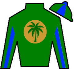 Shelly's Hope Silks