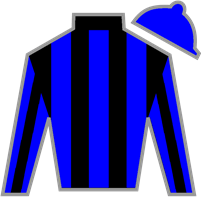 Czechmight Silks