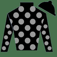 Horse Feldhaus Silks