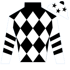Orgilgo Bay Silks