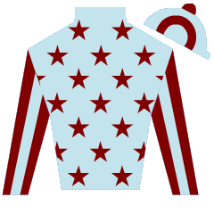 Diamond Vision Silks