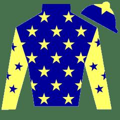 Ducal Silks
