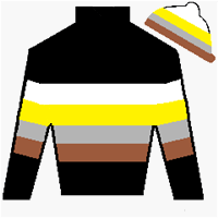 Famous Warrior Silks