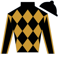 Yankee Injunuity Silks