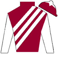 Tally Ho Silks