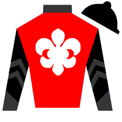Five And Five Silks