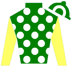 Lady Author Silks