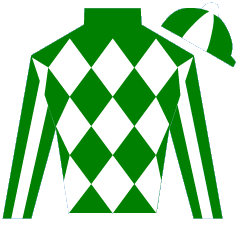 Platinum Futures Silks