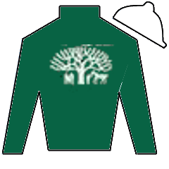 Battle Call Silks