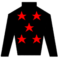 Lethal Weapon Silks