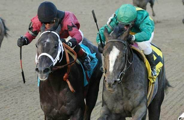 Honor Code nips Cairo Prince in 2013 Remsen