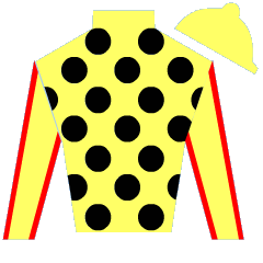 Jose A. Birriel Jr. Silks