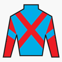 One and Only Silks