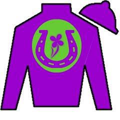 Royal Posh Silks