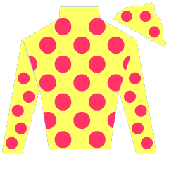 Lady Nickandy Silks